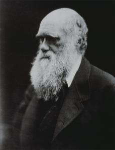Julia Margaret Cameron; Charles Darwin; 1869