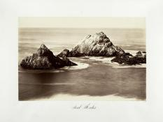Carlton E. Watkins; Seal Rocks; c.1876; albumen silver print from glass negative; The Metropolitan Museum of Art