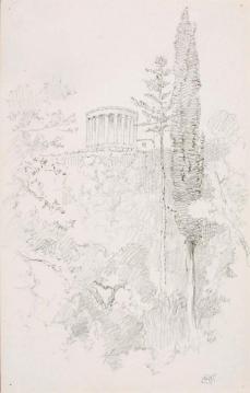 George Elbert Burr; Untitled (Botanical Study); 1889; pencil on paper; 36.4 x 27.8 cm; Smithsonian American Art Museum