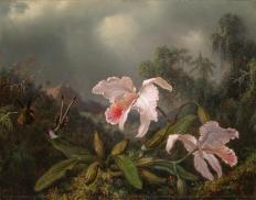 Martin Johnson Heade; Jungle Orchids and Hummingbirds; 1872; oil on canvas; Yale University Art Gallery