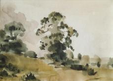 Philip Wilson Steer; Elm Tree; 1922; watercolor