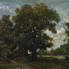 Théodore Rousseau; The Oak Tree; oil on paper, mounted on wood panel; 26.4 x 28.6 cm; The Cleveland Museum of Art