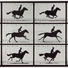 Eadweard Muybridge; Galloping Horse; 1878; George Eastman House, Rochester, NY