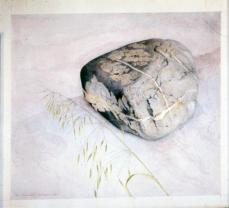 John Langley Howard; Rock and Grass; 1986; watercolor