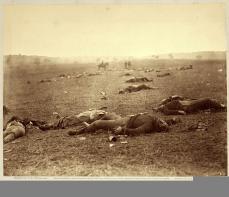 Timothy H. O'Sullivan; A Harvest of Death, Gettysburg, Pennsylvania; 1863; albumen print; 17.2 x 22.2 cm; George Eastman House, Rochester, NY
