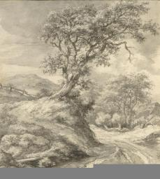 Jacob van Ruisdael; Dune Landscape with Oak Tree; 1650-5; black chalk, brush and gray wash, gouache; 21 x 19.1 cm; The Metropolitan Museum of Art