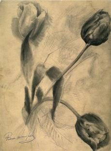 Boris Anisfeld; Tulips; 19th-20th century; 30.9 x 22.6 cm; Fine Arts Museums of San Francisco