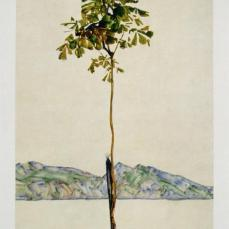 Egon Schiele; Horse Chestnut Tree, Lake Constance; 1912; watercolor and pencil; 45.8 x 29.5 cm