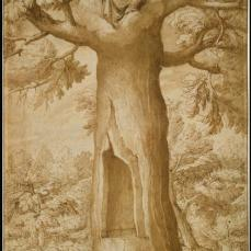 Jacob Ligozzi; The Beech Tree of the Madonna at La Verna; 1547-1627; pen and brown ink, brush and brown wash with traces of gray wash, over black chalk; 40.2 x 25.7 cm; The Metropolitan Museum of Art