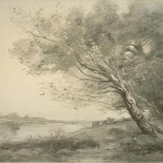 Jean Baptiste Camille Corot; Bent Tree by the Water; charcoal, with stumping and erasing; 454 x 552 cm; The Art Institute of Chicago