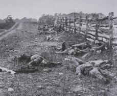 Mathew B. Brady; On the Antietam Battlefield; 1862