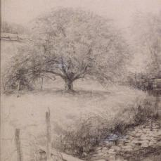 Thomas Fogarty; For friendly confidences give me an apple tree in an old green meadow; c.1917; crayon; Library of Congress Prints and Photographs Division, Washington DC