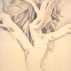 Georgia O'Keeffe; Untitled (Banyan Tree); 1934; graphite on paper; Georgia O'Keeffe Museum