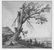 Govaert Flinck; Landscape with a Large Tree; 1642; pen and ink, watercolor on paper; 190 x 195 mm; British Museum