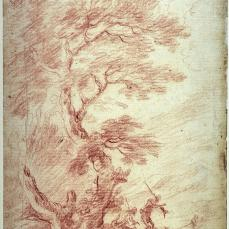 attrib. to Salvator Rosa; Landscape; 17th-18th century; red chalk on laid paper; 26.1 x 19.2 cm; Fine Arts Museums of San Francisco