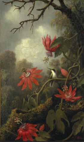 Martin Johnson Heade; Hummingbird and Passionflowers; c.1875-85; oil on canvas; 50.8 x 30.5 cm; The Metropolitan Museum of Art