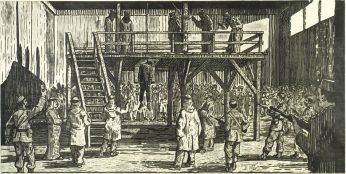 birk execution