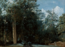 Jean-Baptiste-Camille Corot; Clearing in the Forest of Fontainebleau; c. 1830; oil on canvas; Kunsthalle Bremen