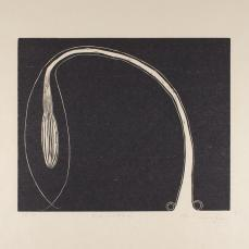 Martin Puryear; Karintha, from the Cane portfolio; 2000; woodcut on handmade Japanese paper; 43.0 x 52.2 cm; Princeton University Art Museum