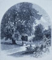 Frederick Law Olmsted; New York: Central park Reference: Foot-path by the willow SE of mall; 1869; New York, NY