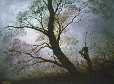 Caspar David Friedrich; Trees in the Evening Light; 1824; oil on canvas; 20 x 26 cm