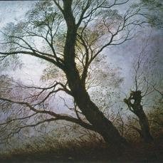 Caspar David Friedrich; Trees in the Evening Light; 1824; oil on canvas; 20 x 26 cm