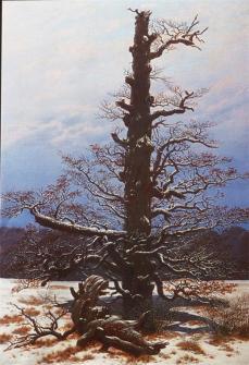 Caspar David Friedrich; Oak Tree in the Snow; 1829; oil on canvas; 71 x 48 cm