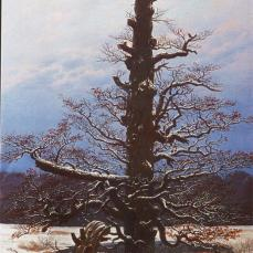 Caspar David Friedrich; Oak Tree in the Snow; 1829; oil on canvas; 71 x 48 cm