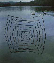 Andy Goldsworthy; Yorkshire Sculpture Park: Two made in the same place/ sticks and willow herb stalks/ pushed into lake bottom/ shallow...; 1987; sticks, water