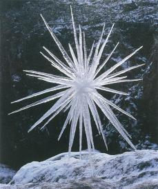 Andy Goldsworthy; Icicles/ thick ends dipped in snow then water/ held until frozen together...; 1987; ice; Scaur Water, Dumfriesshire