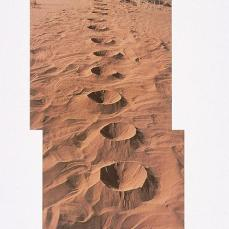 Andy Goldsworthy; Fine dry sand/ edges and ridges softened by the breeze; 1989; Arizona