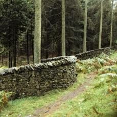 Andy Goldsworthy; The Wall that Went for a Walk (detail with path); 1990; Grizedale Forest Park, Cumbria