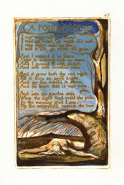 William Blake; A Poison Tree; 1794; etching with water color