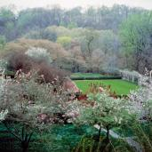 Beatrix Jones Farrand; Dumbarton Oaks; 1920-40; Mildred and Robert Woods Bliss
