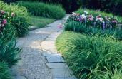 Beatrix Jones Farrand; Dumbarton Oaks, general view