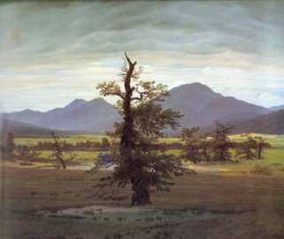 Caspar David Friedrich Landscape with Solitary Tree