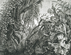 Carl Wilhelm Kolbe, A Tree with Giant Vegetation, etching 1820