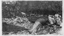 Kollwitz_Rapped_1907