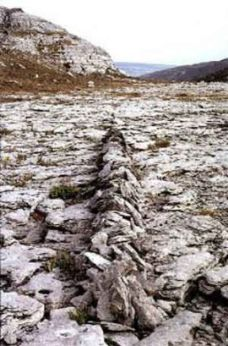 Richard Long; Ireland Line; 1974