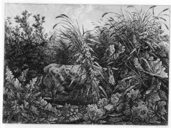 Carl Wilhelm Kolbe, The Cow in the Swamp, 1803