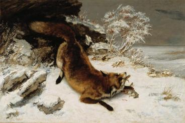 Jean Gustave Courbet; Fox in the Snow; 1860; oil on canvas; 85.72 x 127.79 cm
