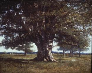 Jean Gustave Courbet; Oak at Flagey; 1864; 89 x 110 cm