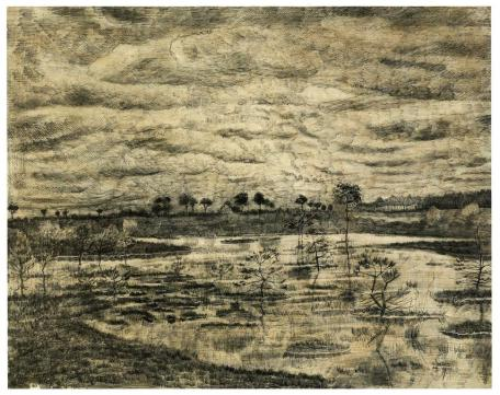 Vincent van Gogh; Marsh; 1881; pen and ink, graphite on laid paper; 42.5 x 56.5 cm; National Gallery of Canada, Ottawa