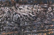 Anselm Kiefer; Departure from Egypt; 1984; oil, straw, laquer, lead rod on canvas; 149.5 x 221 in