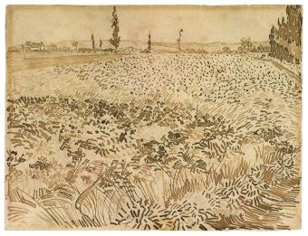 Vincent van Gogh; Wheat Field; 1888; pencil, pen, reed pen and brown ink on wove paper; 24.1 x 31.7 cm