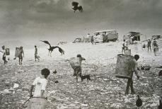 Sebastiao Salgado; Brazil: Tens of thousands of refugees from the great drought fight with vultures for food; 1983