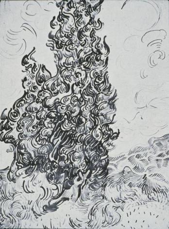 Vincent van Gogh; Cypresses; 1889
