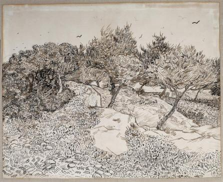 Vincent van Gogh; Olive Grove at Montmajour; drawing