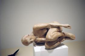 Kiki Smith; Honeywax; 1995; beeswax; 15.5 x 36 x 20 inches