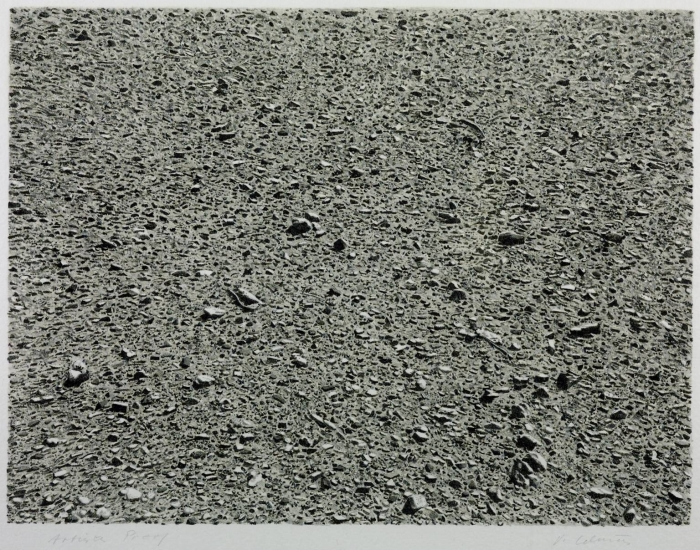 Desert 1975 by Vija Celmins born 1938